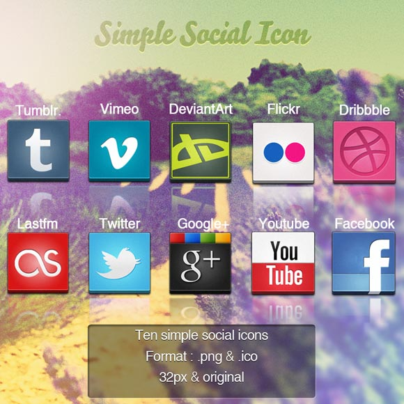 10 Best Social Icons by Schulerr