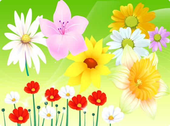 Free Vector Flowers 06