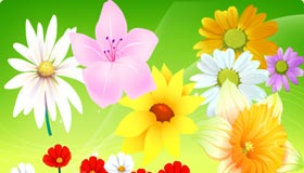Free Vector Flowers 06